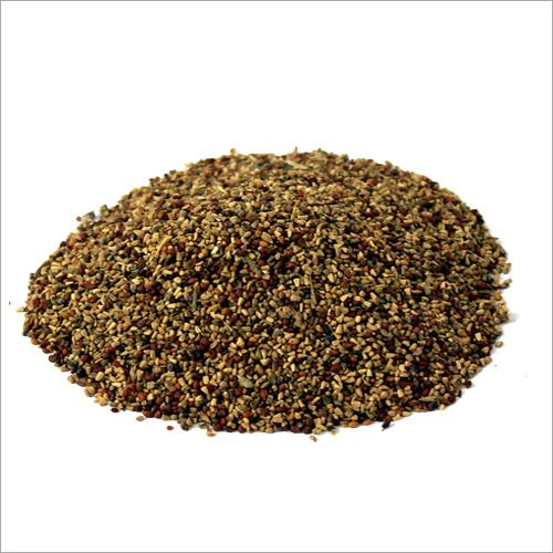 Kasni Seeds