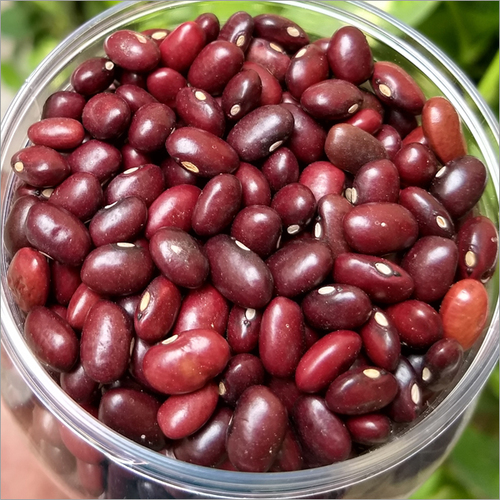 Rajma Pulse