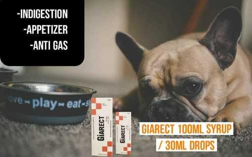 Dog Gastric Syrup