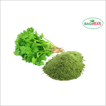 Parsley Leaves Powder