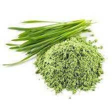 Herbs & Powder