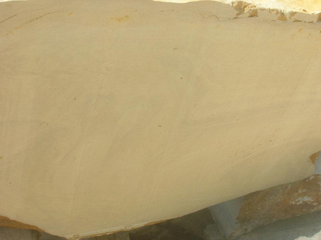 Yellow Plain Limestone