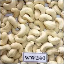 W240 Cashew