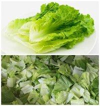 FC-301 lemon grass cutting machine lettuce cutting machine cabbage shred cutting machine