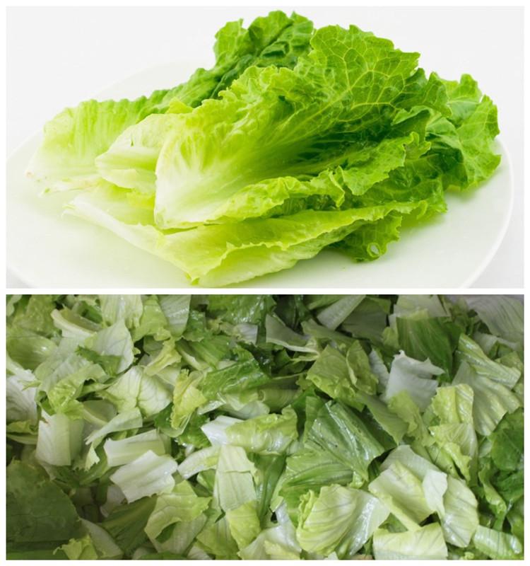 FC-306 Iceberg shred cutting machine Lettuce Cabbage spinach cutting machine