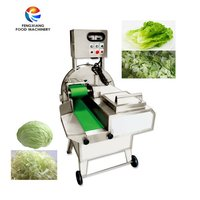 FC-306 Leafy vegetable cutting machine banana cutting machine pineapple chip cutting machine