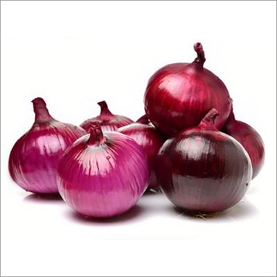 Fresh Onion Seed