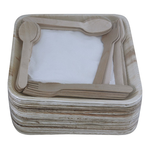 Square Areca Leaf Plate and Spoon Set