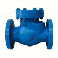 MS Swing Check Valve
