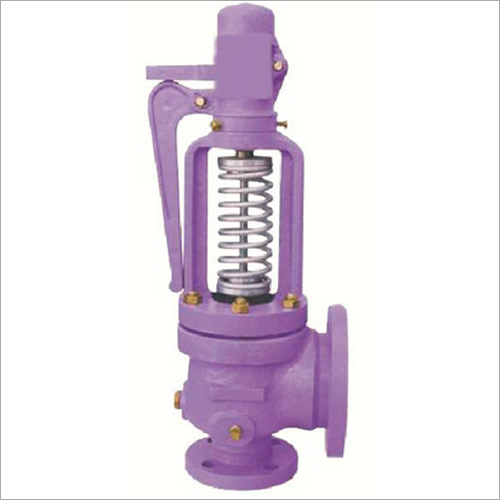Industrial Steam Relief Valve