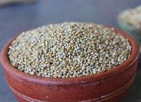 Organic Bajra  (Pearl millet)