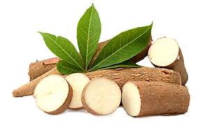 Tapioca Starch Food Grade
