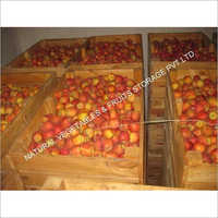 Vegetables Cold Storage