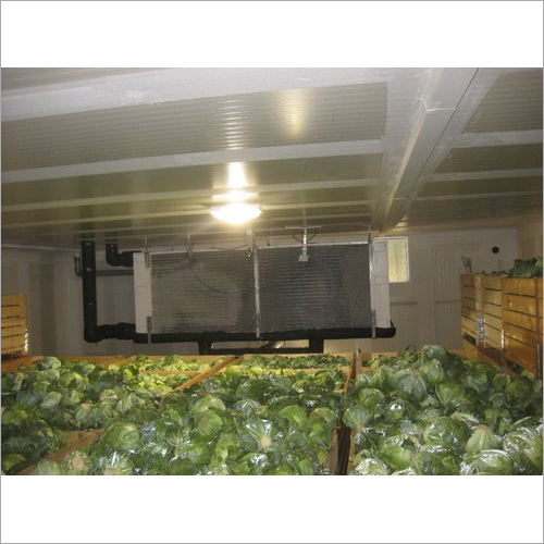 Edible Food Cold Storage Room