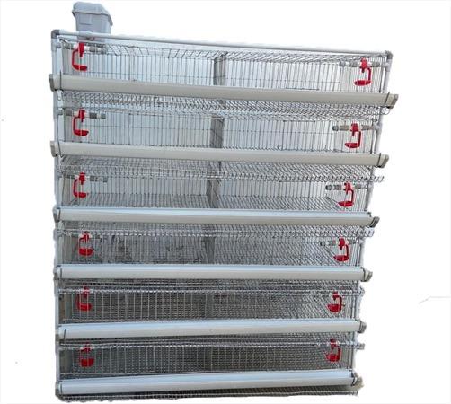 Polylite Quail Cage