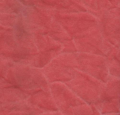 Stone wash Printed Canvas (Red)