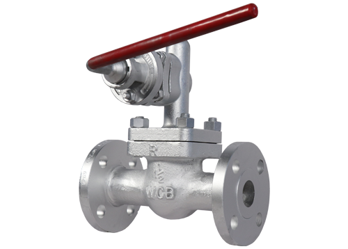 Cast Steel Blow Down Valves