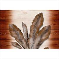 Home Wood Tiles
