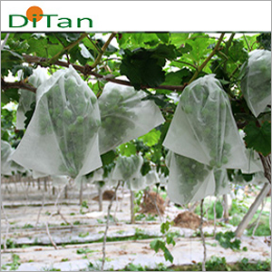 PPNonWoven Agriculture Fruit Covring