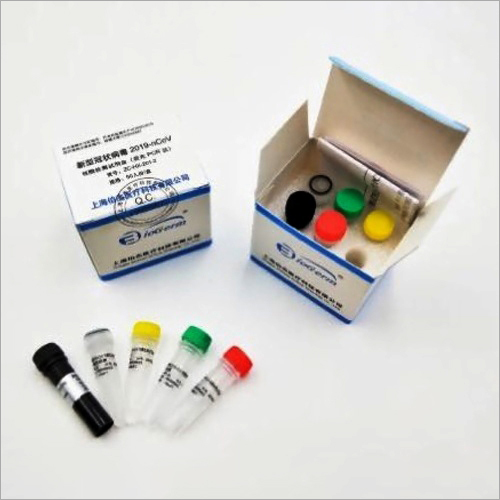 Real Time Fluorescent RT - PCR Test Kit