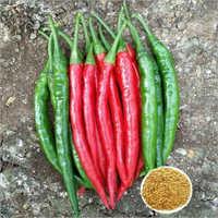 Ashwini F1 Hybrid Chilli Seeds