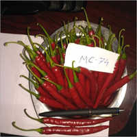 Hybrid Chilli 72 Seed