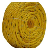 14 MM Danline PP Rope