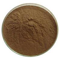 Hoodia Extract