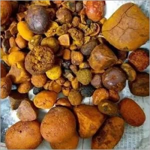 Preserved 80/20 Cow/Ox/Cattle Gallstones For Sale