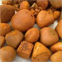 Top Qaulity Ox Gallstones/Cattle