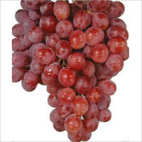 Red Seedles Grapes