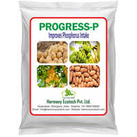 Progress-P Improves Phosphorus Intake