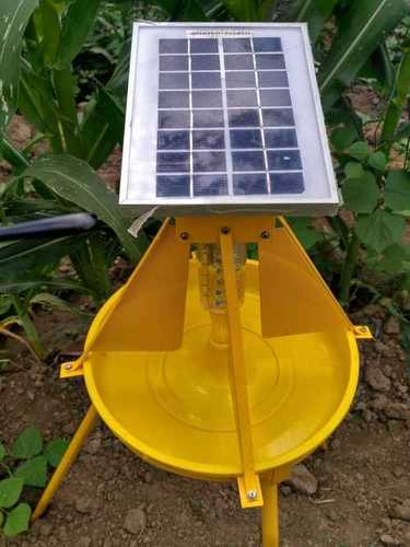 Solar Light Trap Medium