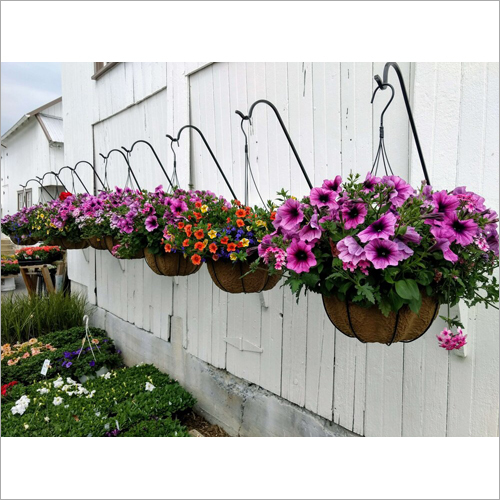 Coir Hanging Basket