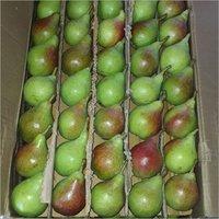 Fresh Pear