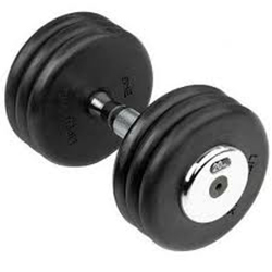 Dumbell for Gym