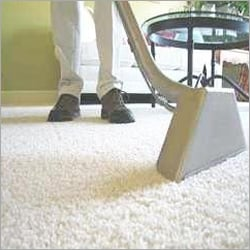 Computer Sofa Carpet Cleaning Services