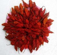 Bhut Jolokia (Ghost Pepper) (dried)