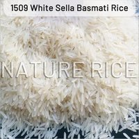 1509 Creamy Sella Basmati Rice