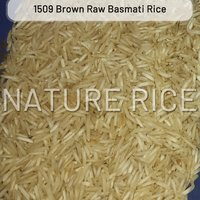 1509 Brown Raw Basmati Rice