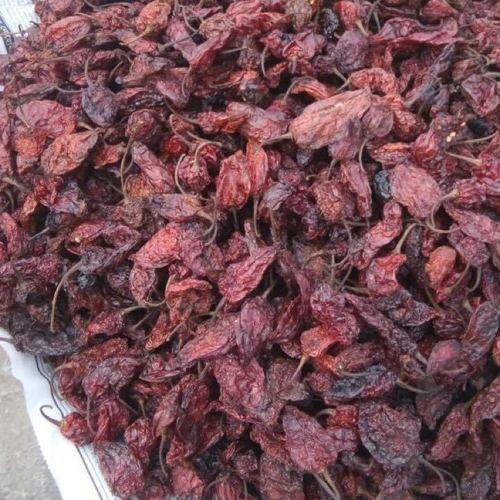 Smoke Dried Bhut Jolokia Chilli