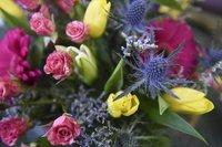 Importer Of Fresh Flower