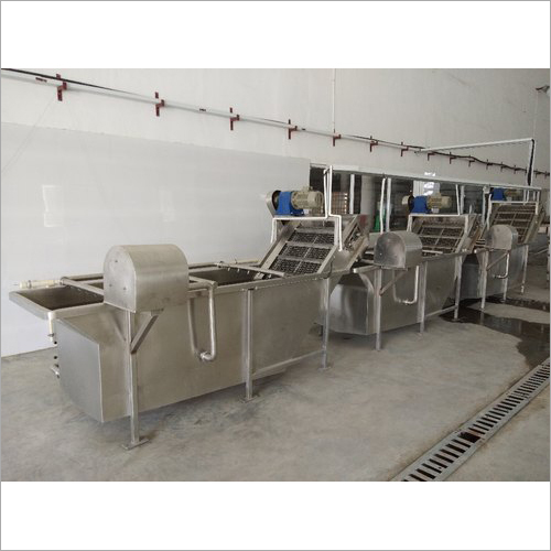 Industrial Fruit Washer System.