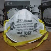 3M N95 Face Mask