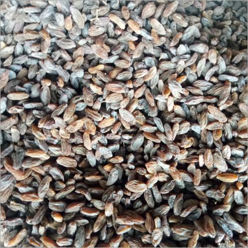 Dry Raisins