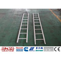 TYLGS-25 Aluminum Alloy Ladders