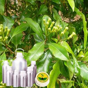Clove Leaf Certified Organic Oil