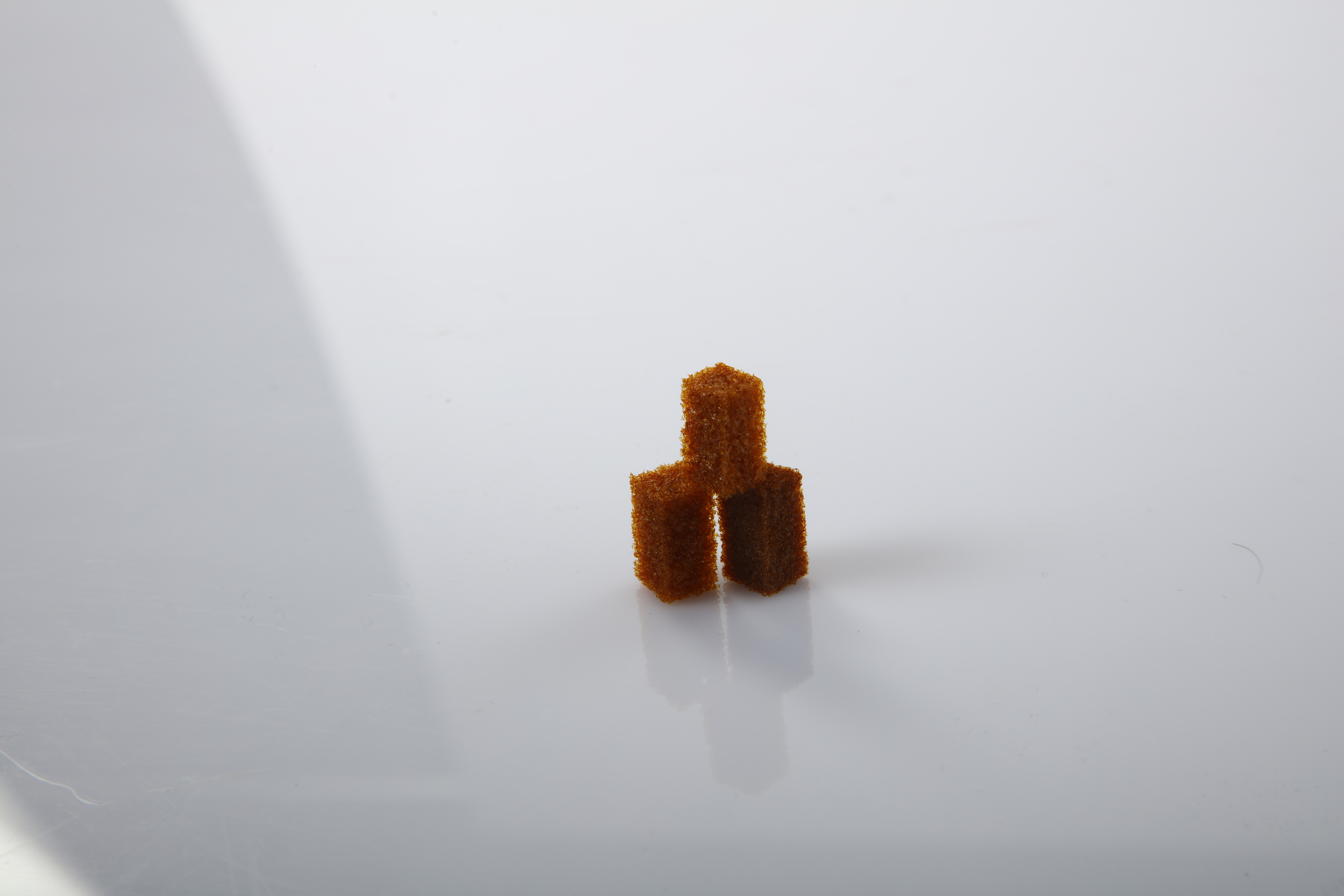 Dentospon Absorbable gelatin sponge with colloidal silver