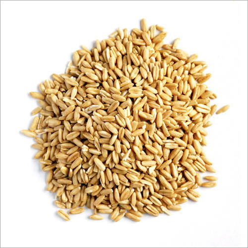 Whole Oat Groats