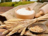 Wheat Flour Maida